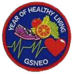 Healthy Living Patch
